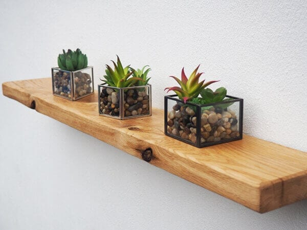 Air Oak Dried Shelf